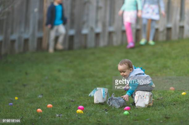 bunny in backyard easter egg hunt! - easter egg hunt stock photos and pictures