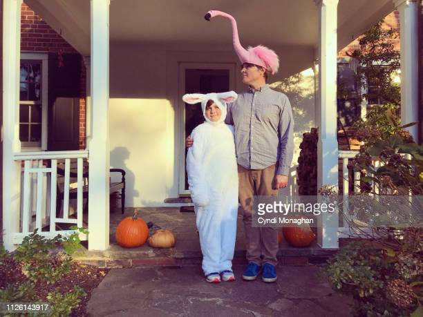 bunny rabbit and flamingo costumes - mask disguise stock pictures, royalty-free photos & images