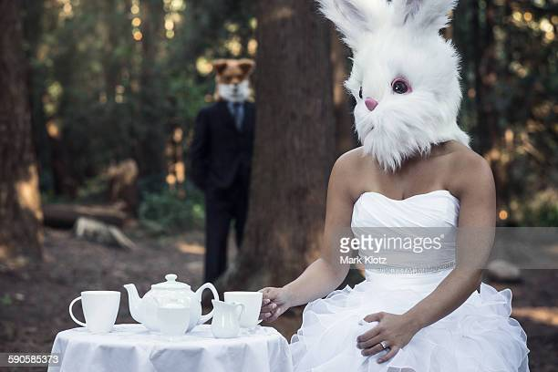 Bunny waiting for fox to join her for tea