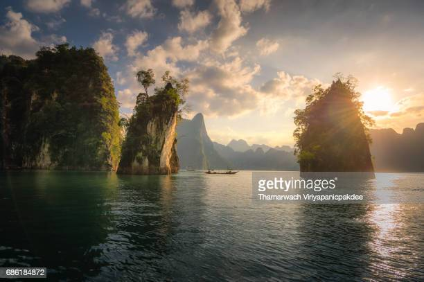 3 bunting - surat thani province stock pictures, royalty-free photos & images