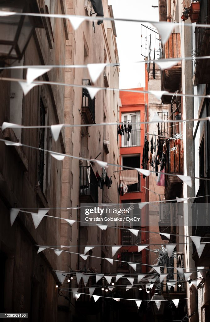 Buntings Against Buildings : Stock-Foto