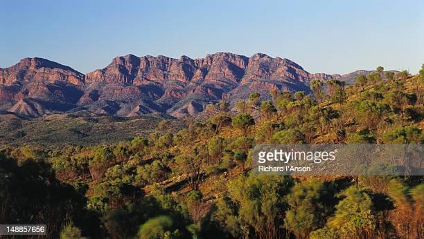 Bunyeroo Valley - Flinders Ranges National Park, South Australia