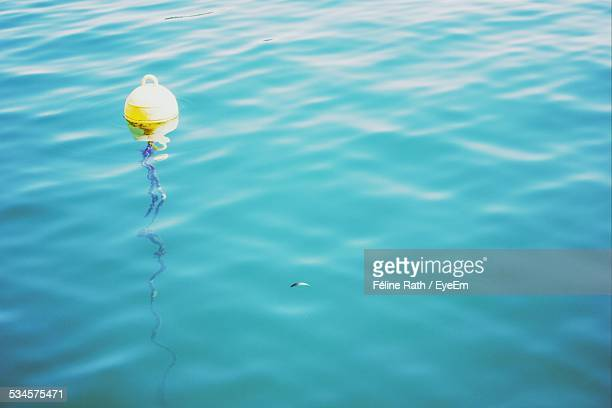 Buoy In Water On Sunny Day