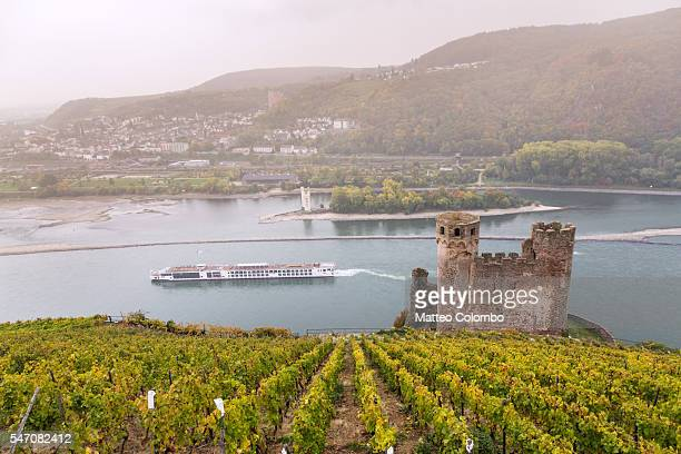 burg ehrenfels, rudesheim, rhine valley, hesse, germany - rhine river stock pictures, royalty-free photos & images
