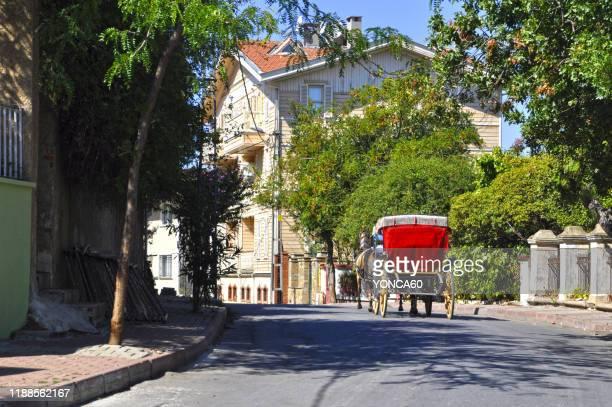 burgazada, istanbul - pferdeantrieb stock-fotos und bilder