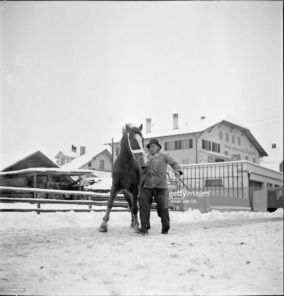 burgdorfer pferdemarkt 2020