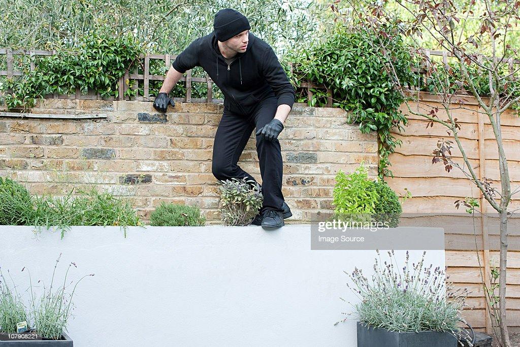Burglar climbing on wall : Stock Photo
