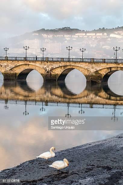 burgo bridge reflection - pontevedra province stock pictures, royalty-free photos & images