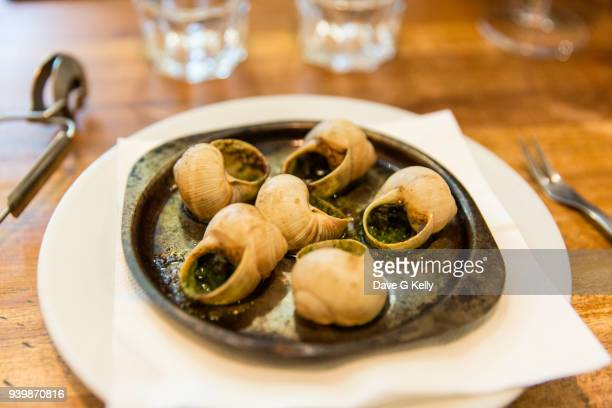 burgundy escargot snails with garlic herbs butter in metal pan on rustic wooden background - snail stock pictures, royalty-free photos & images