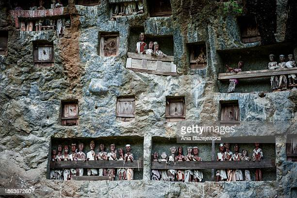 Burial cliff with tau tau in Lemo in Tana Toraja, Sulawesi. Tana Toraja, situated in the south of Sulawesi, sometimes reminds alive museum full of...