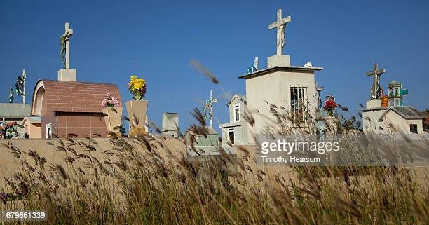 burial crypts with blowing grasses in foreground - timothy hearsum stock pictures, royalty-free photos & images