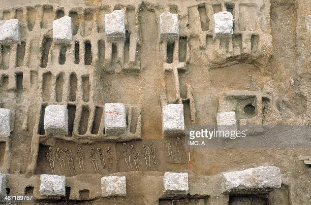 A burial trench and rows of individual graves excavated between the concrete foundations of the Royal Mint from the excavation of the Black Death...