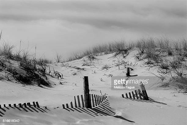 Buried Fences: Black and White Scenic View of Beach Dunes