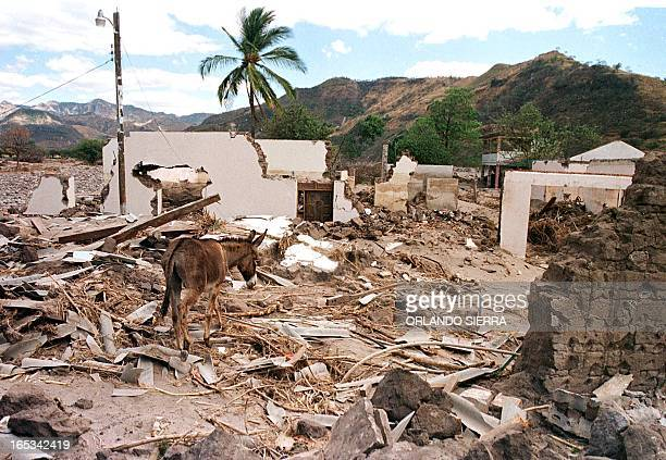 Buried in a sand sea the 22 October 1999 the rest of the catolic church of Morolica in Honduras rest a town that the hurricane Mitch convirtio in...