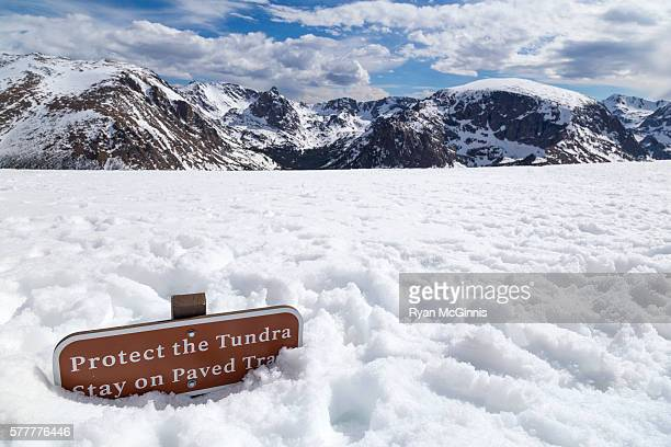 Path Across Frozen Arctic Tundra Was >> 60 Top Tundra Pictures Photos Images Getty Images