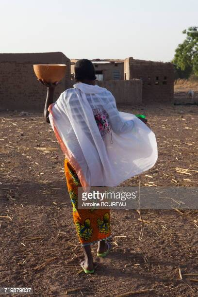 Burkina Faso, Woman returning with the milk to the farm after milking in a gourd, the village of Ponsom Tenga is located 20 kilometers from Ouagadougou
