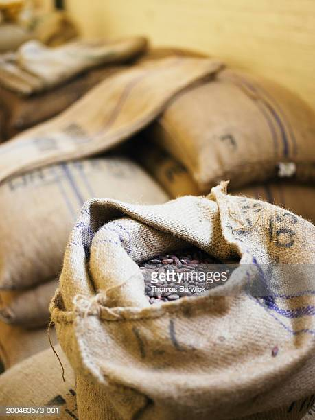 Burlap sacks filled with organic Ghana cocoa beans, elevated view
