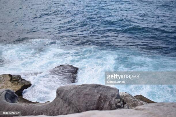 Burleigh Ocean