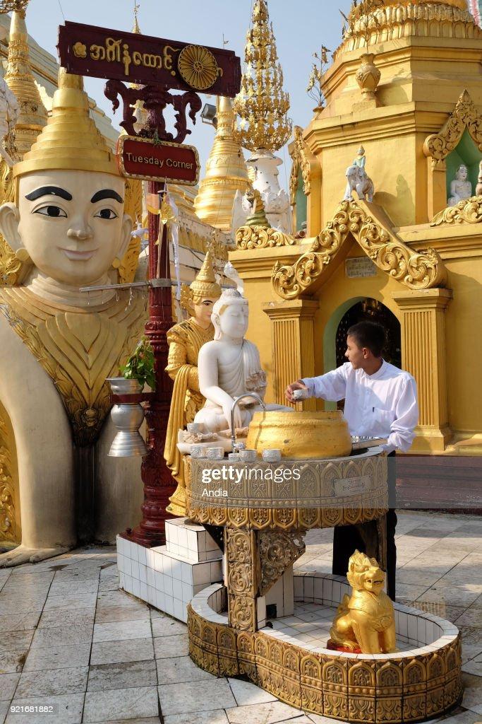 Shwedagon Pagoda in Rangoon. : News Photo