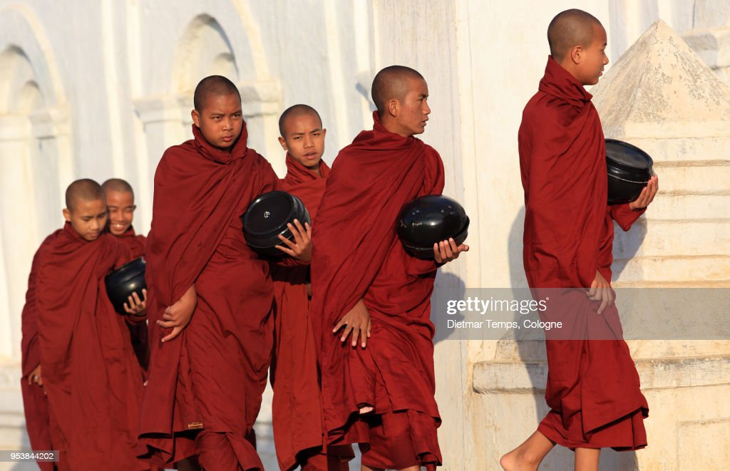 Burmese Buddhist monks collect alms, Myanmar : Stock-Foto