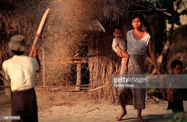 Burmese farmers extracting rice at the paddy field near their house..