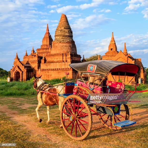 Birmano hombre conduciendo un carro de caballo, Bagan, Myanmar