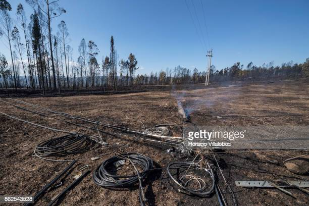Burned and replacement optic cables are seen near a smoldering telephone pole in an area where Portugal Telecom workers are replacing those burned by...