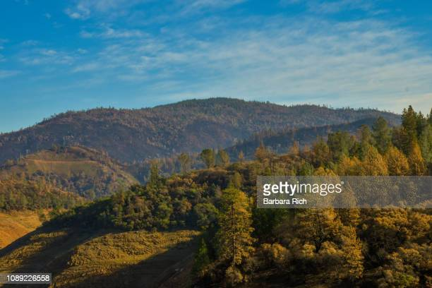 burned landscape along hwy 70 into the feather river canyon after the california camp fire - oroville california stock pictures, royalty-free photos & images