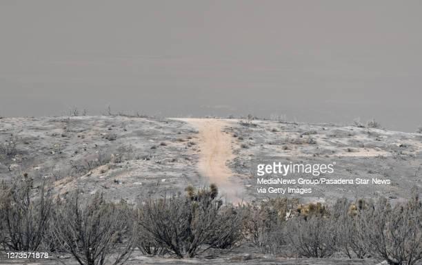 Burned landscape during the Bobcat Fire in Juniper Hills on Saturday September 19 2020