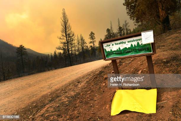 Burned trees and scorched earth can be seen in the forest where the 416 fire burned on June 13 2018 near Hermosa Colorado The fire burning 23 miles...
