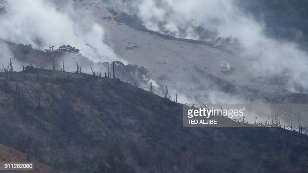 Burned trees with steaming lava and pyroclastic deposits are seen at the foot of the Mayon volcano from the town of Daraga in Albay province on...