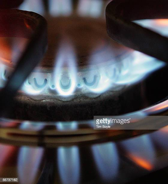 A burner on a stove emits blue flames from natural gas September 21 2005 in Des Plaines Illinois Prices for natural gas this winter could skyrocket...