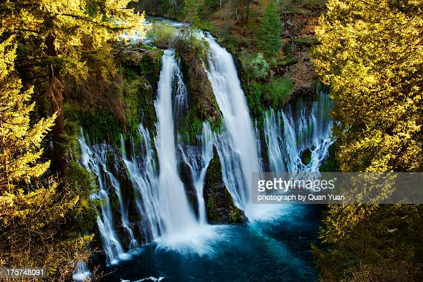 burney falls overlook - yuan quan stock pictures, royalty-free photos & images