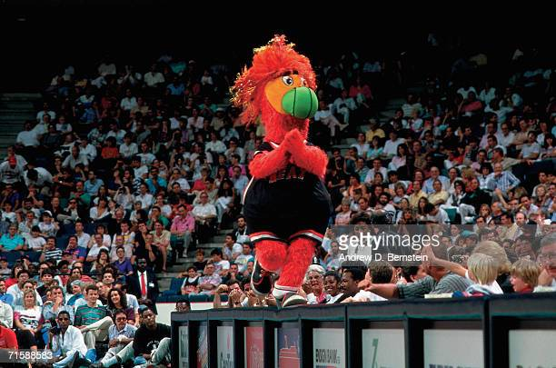 Burnie the Miami Heat mascot hypes up the fans during the team's first ever home game against the Los Angeles Clippers played November 5 1988 at...