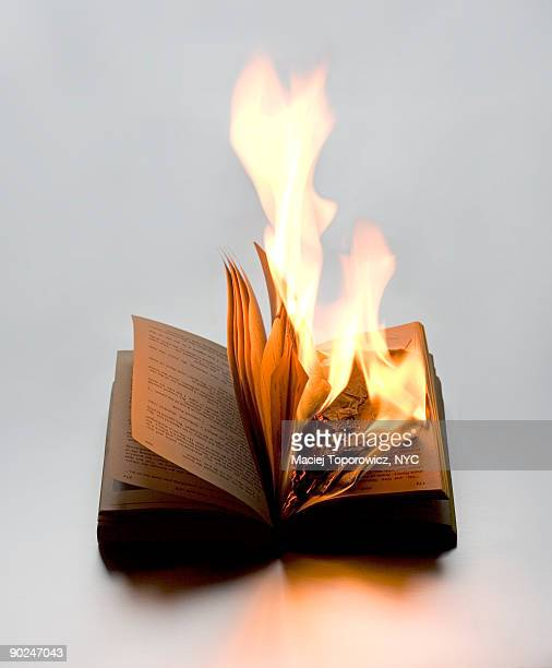 burning book - book burning stock pictures, royalty-free photos & images