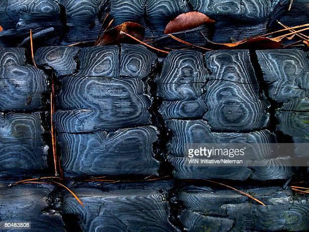 Burning coal, close-up
