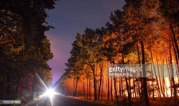 TOPSHOT A burning forest is pictured on August 24 2018 in Klausdorf northeastern Germany as a forest fire raging 50 kilometres southwest of Berlin...
