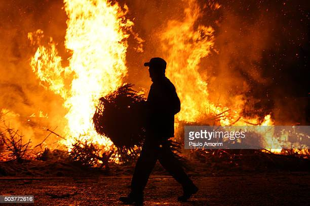 Burning of Christmas Trees in Amsterdam,