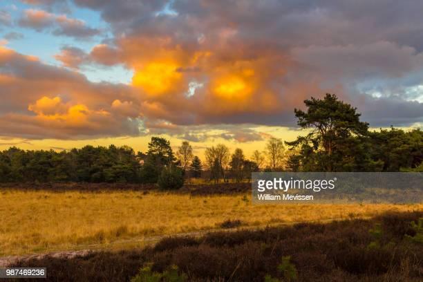 burning sky - william mevissen bildbanksfoton och bilder