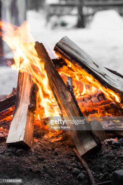 Burning wood logs on campfire in Finland