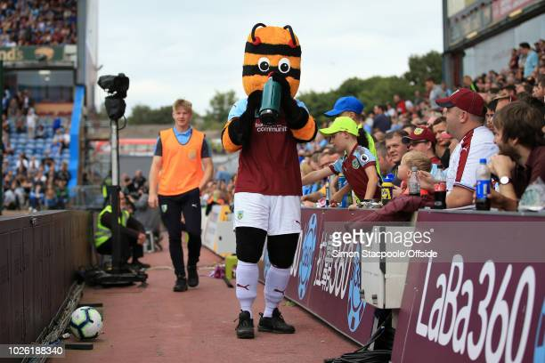 Burnley mascot Bertie Bee drinks from a flask before the Premier League match between Burnley and Manchester United at Turf Moor on September 2 2018...