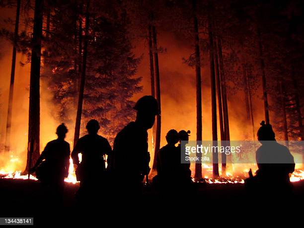 burnout at  b&b complex - forest fire stock pictures, royalty-free photos & images