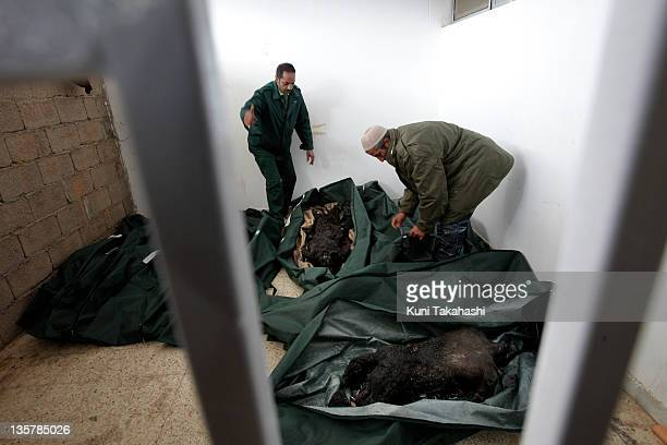 Burnt bodies are put in body bags at hospital February 25 2011 in Benghazi Libya These bodies are allegedly soldiers who were killed and torched by...