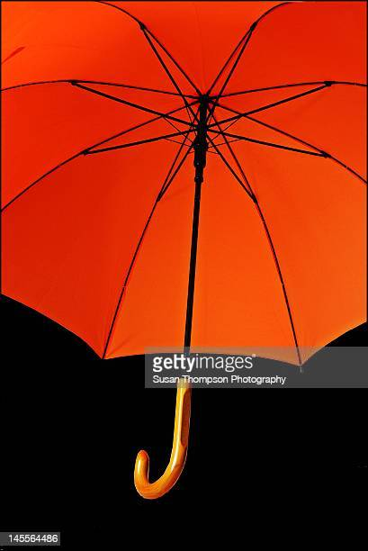burnt orange umbrella - chatham new york state stock pictures, royalty-free photos & images