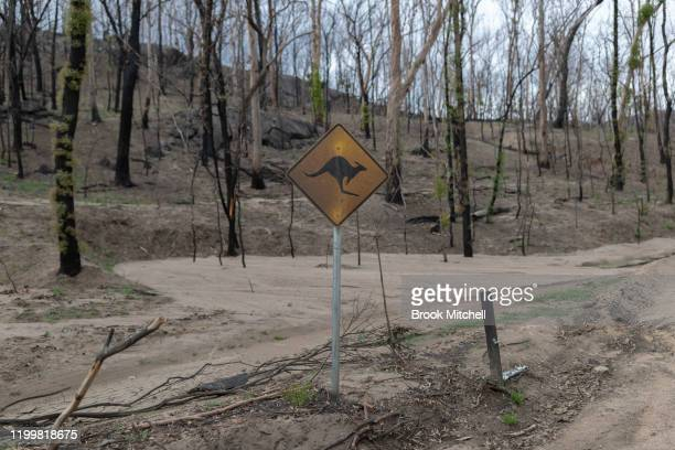A burnt out wildlife warning sign is seen on January 14 2020 in Wytaliba Australia On the afternoon of November 8 firestorms ripped through the small...