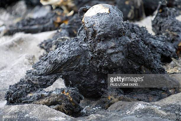 A burnt scooper trying to escape from the oil blast at Ilado in Lagos 12 May 2006 Over 200 people were burnt beyond recognition trying to vandalise...
