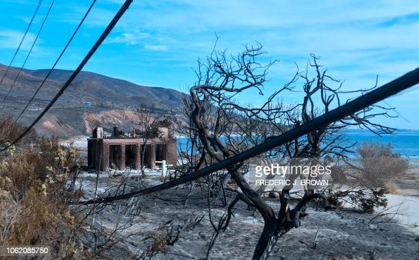 A burnt structure remains standing surorunded by downed power lines and trees at Leo Carillo State Beach in Malibu California on November 15 2018...