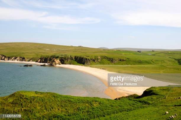 burrafirth beach at unst island, shetlands - isole shetland foto e immagini stock