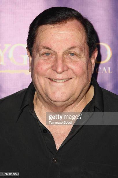 Burt Ward attends the Premiere Of The Bodyguard at the Pantages Theatre on May 2 2017 in Hollywood California