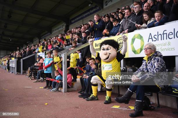 Burton Albion Mascot Billy celebrates after his sides first goal during the Sky Bet Championship match between Burton Albion and Bolton Wanderers at...